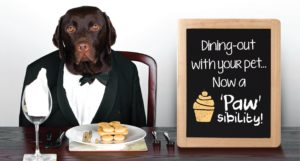Dining Out With Your Dog In Charlotte