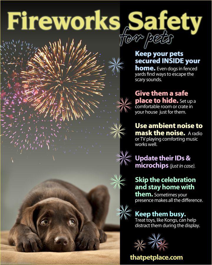 Fireworks & Pets... how to keep them safe