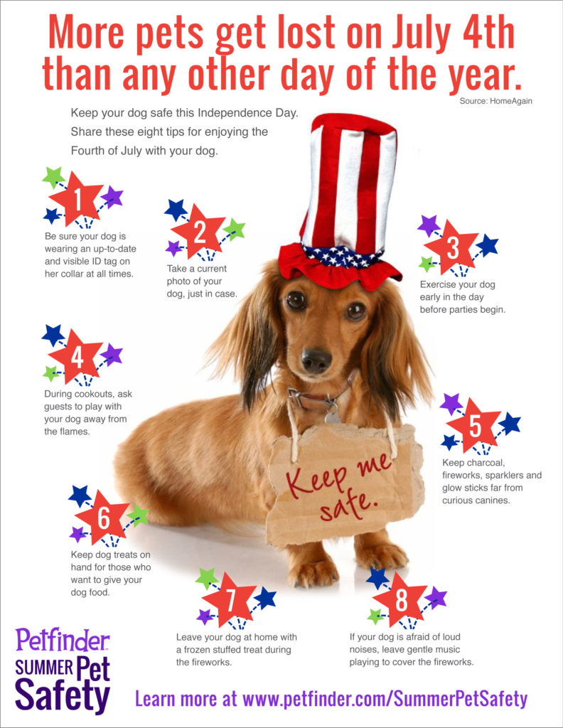 keep your dog safe on july 4th