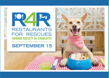 Charlotte's Restaurants For Rescues Event September 2020